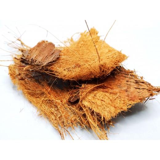 Ścinki nasady liścia palmy 30g