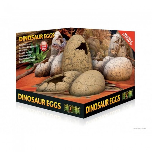 Jaja dinozaurów kryjówka...